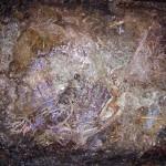 """<b>PREMICES (Technique mixte format 65x54 cm)</b> <br /> Déchirer ce vieux manteau qui brûle mes épaules et marcher devant toi avec mes habits neufs<br />Prémices est un substantif féminin toujours employé au pluriel. Emprunté du latin primitiae (""""premières productions de la terre"""") lui même dérivé de primus (""""premier""""), il désignait dans l'Antiquité les premiers produits de la terre ou du bétail donnés en offrande à une divinité. Il a aujourd'hui le sens figuré de """"commencement, prélude; premières manifestations ou premières apparitions d'un processus"""""""